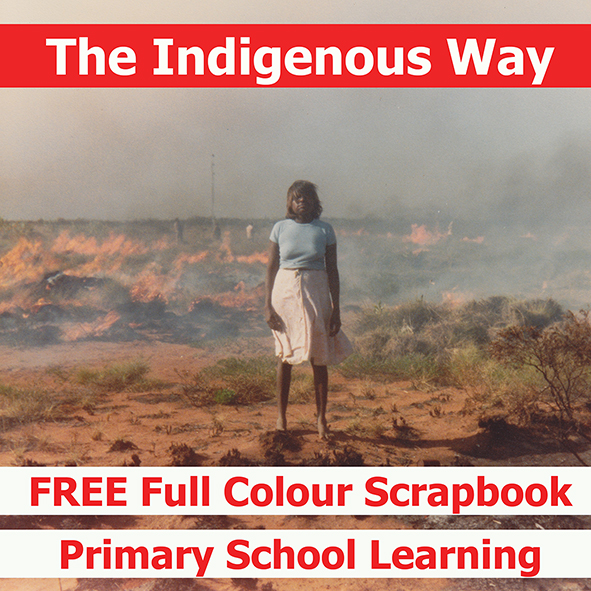 The Indigenous Way